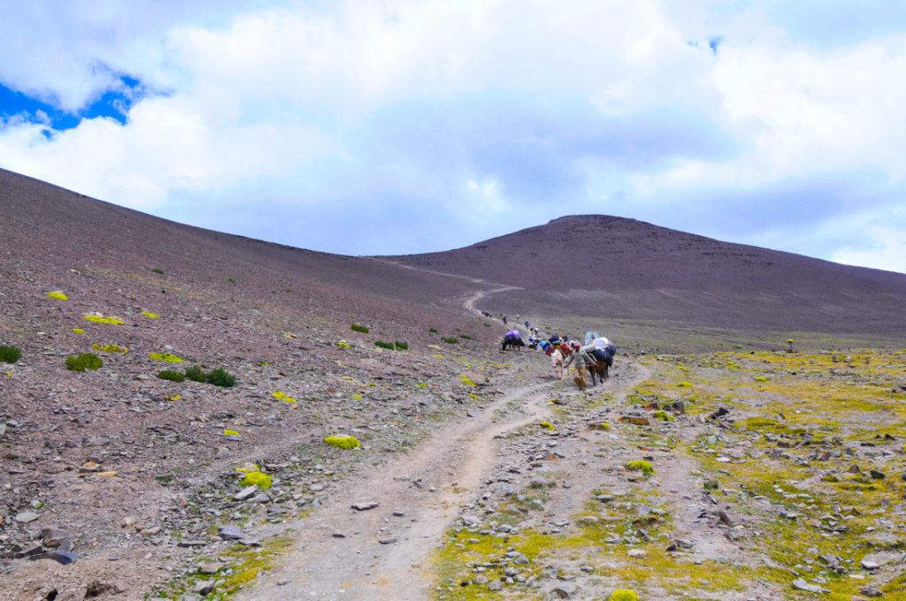 Los últimos 300 metros antes de llegar al Gongmaru La pass, el punto más alto de todo el trekking del valle de Markha, a 5,200 metros de altitud