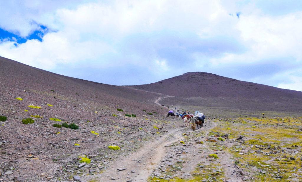 Last 300 meters before reaching Gongmaru La pass, the highest point of Markha Valley trek (5,200m)