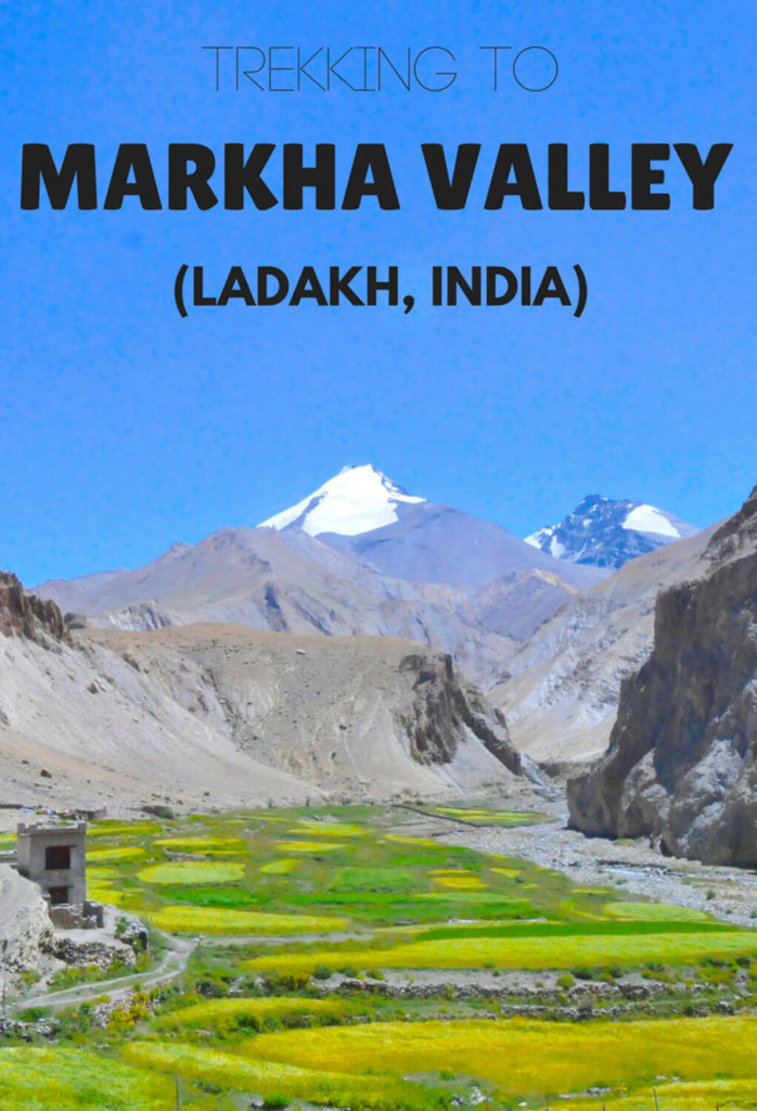 Markha Valley trek, Ladakh