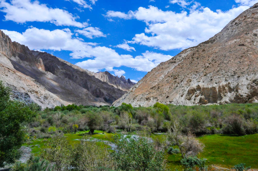 Markha Valley trek follows the Markha river for the most part of it