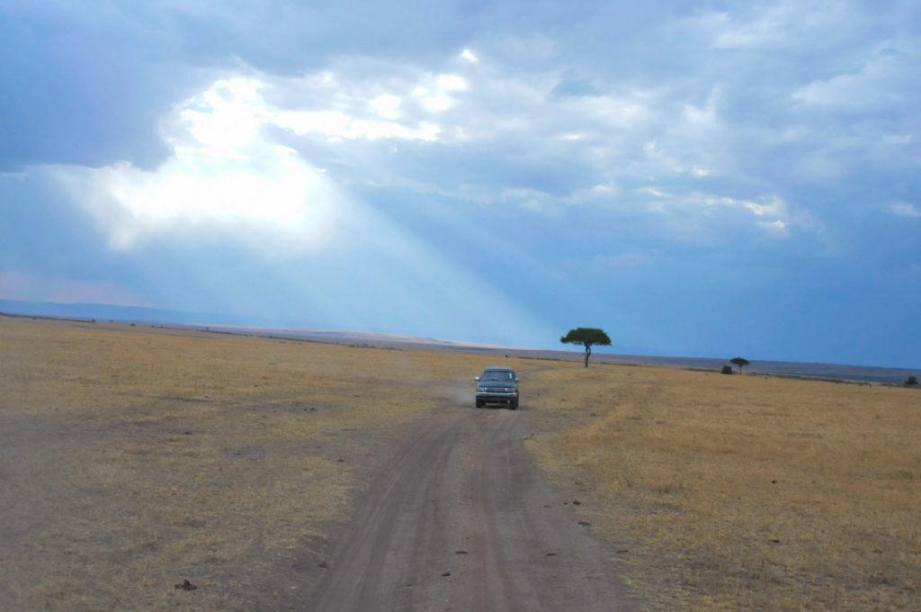 Safari at the Maasai Mara