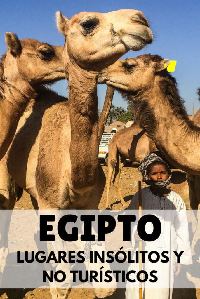 Lugares no turísticos e insólitos que visitar en Egipto