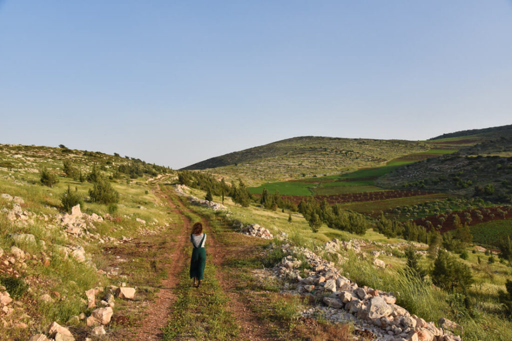 The green hills around Jenin (Raba village)