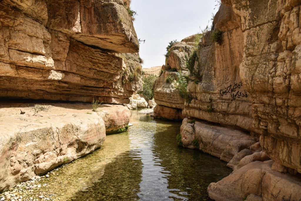 Travel to Palestine (West Bank) – 2-week itinerary + Tips water srepings wadi qelt 1024x684