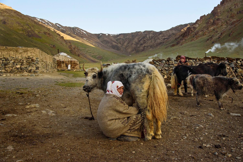 Nómada Kirguistán