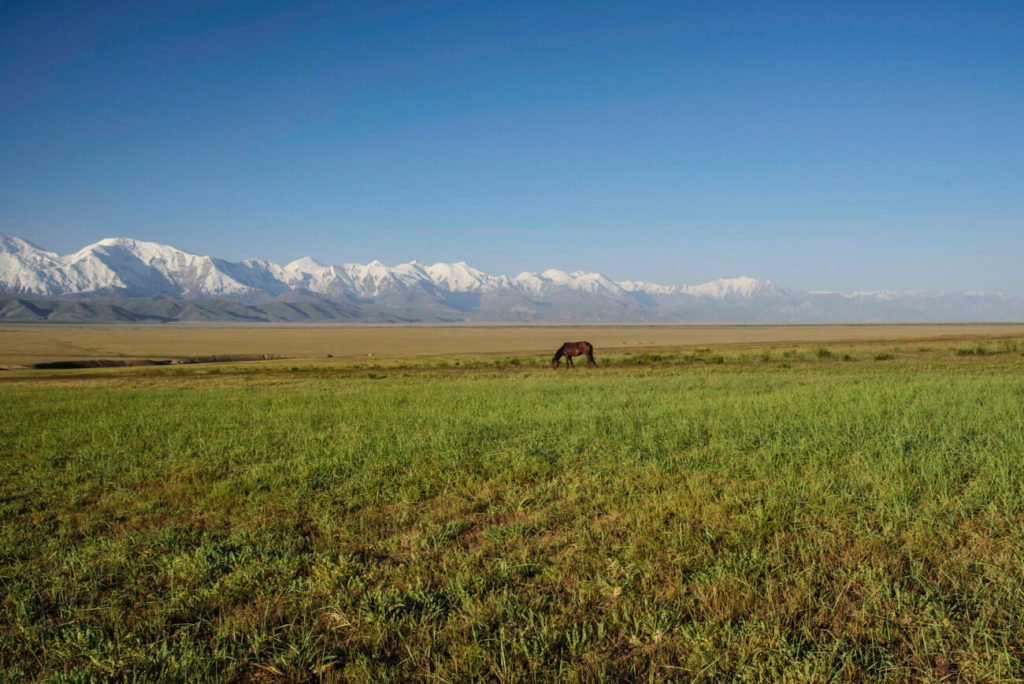 The Alay valley, Kyrgyzstan
