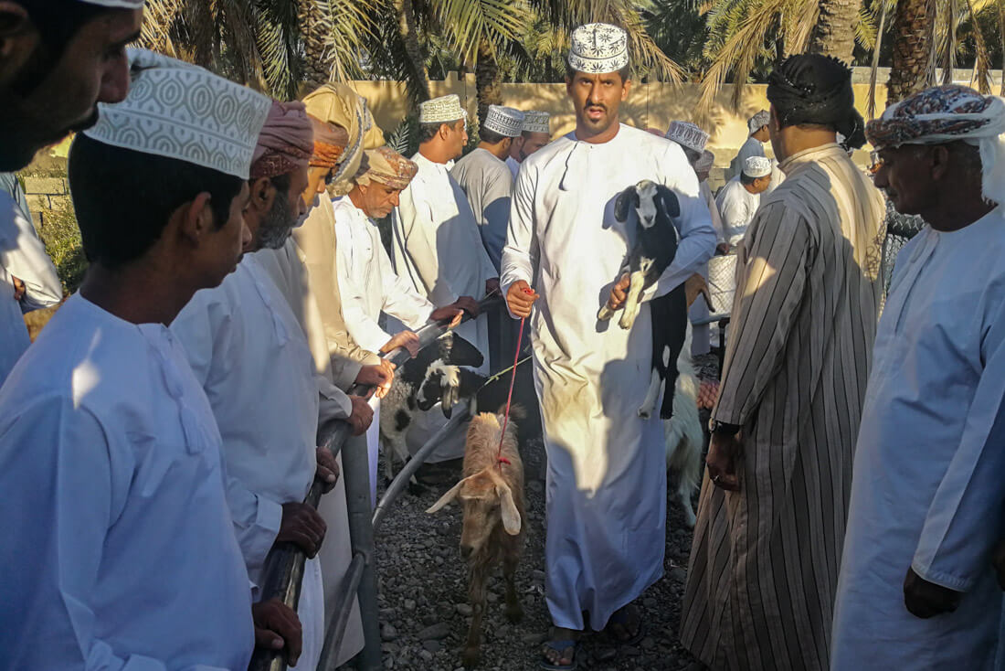Mercado animales Nizwa
