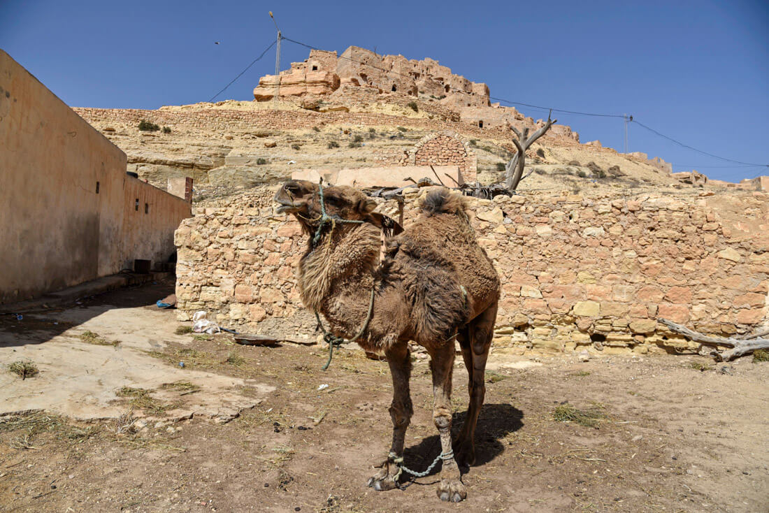 things to see in Tunisia