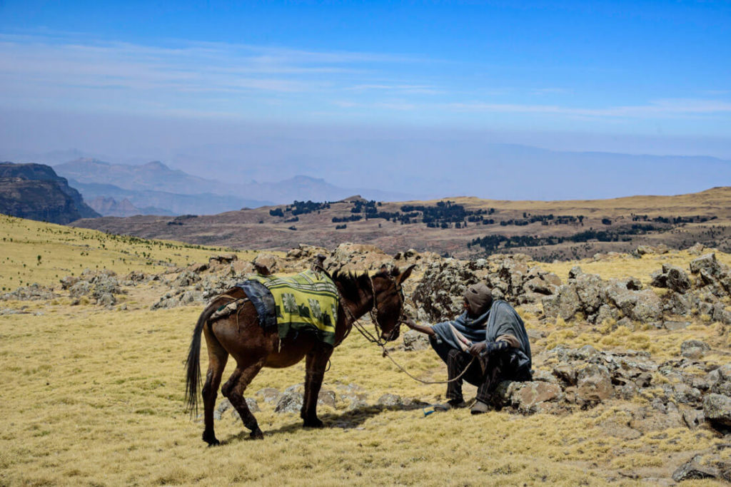 Simien mountains hike