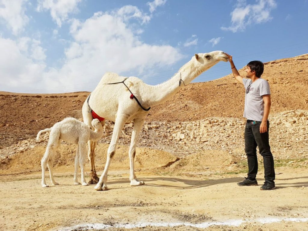 is the middle east safe for tourists