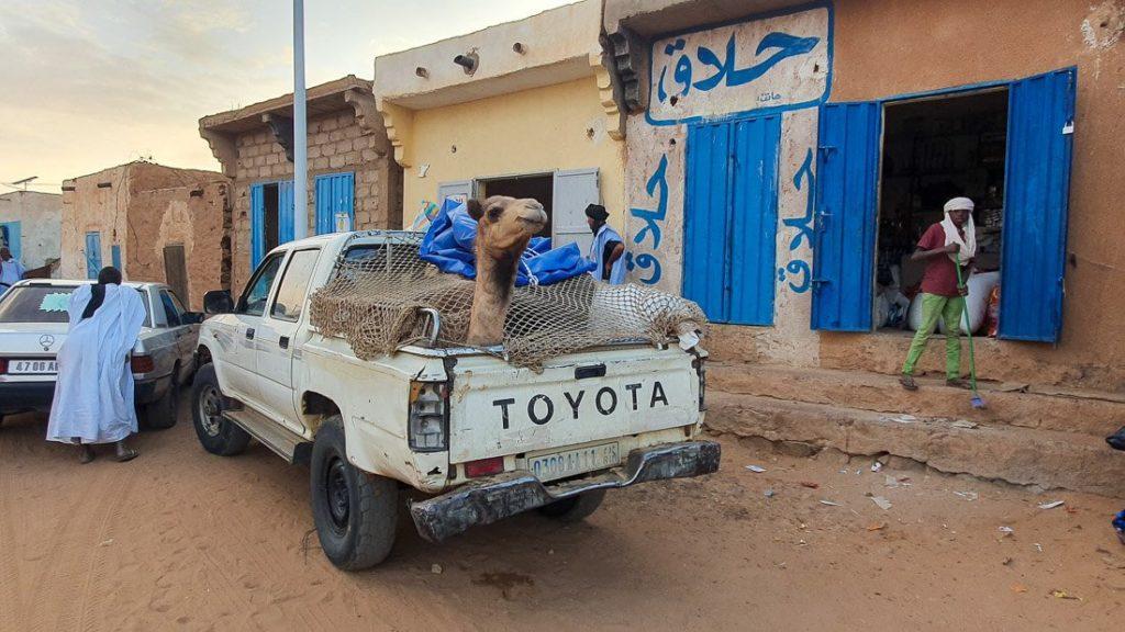 Cómo viajar por Mauritania