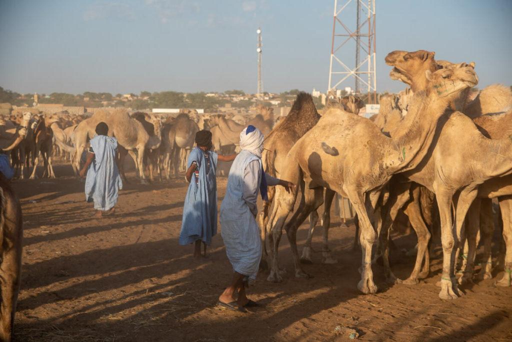 viajar a Nuakchot